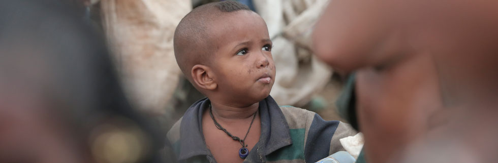 Ethiopia drought: schools closing, livestock dying, and wells drying up